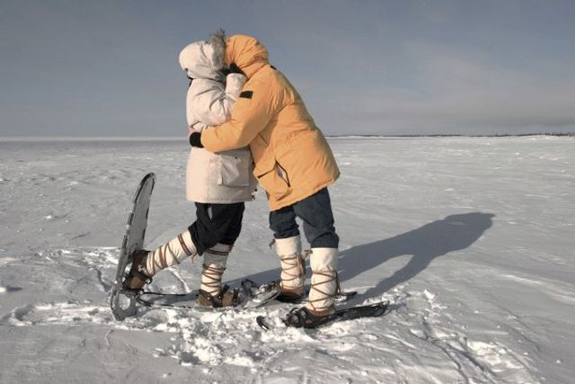 Tinder Matches In Antarctica featured image