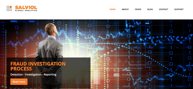 Salviol Raises €6.5 Million Series A To Help Companies Use Big Data To Fight Fraud featured image