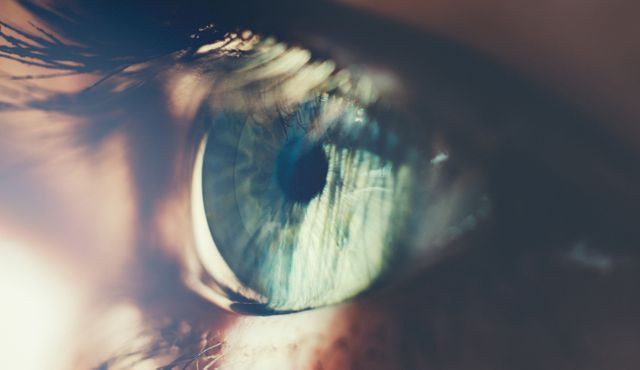 Alibaba Pays $100 Million For Eye-Scan Firm Used by U.S. Banks featured image