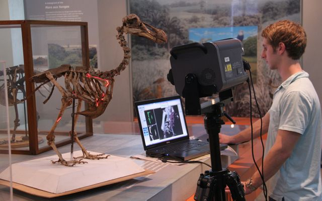Shooting Dodos with a laser featured image