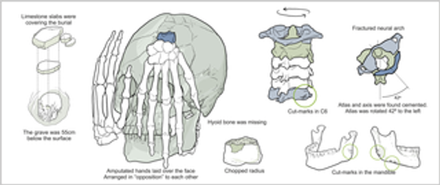 Ancient decapitation in Brazil featured image