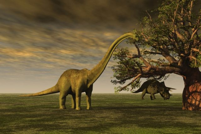 Tech Startups Are Prodding the Dinosaur That Is the Insurance Industry featured image