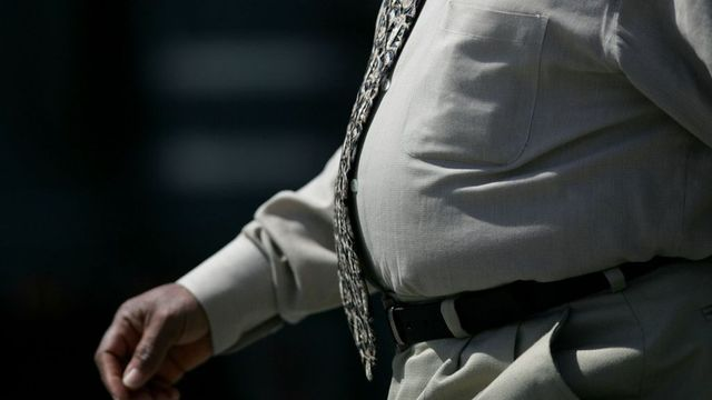 India court says 'fat elephant' taunt is sufficient grounds for divorce featured image