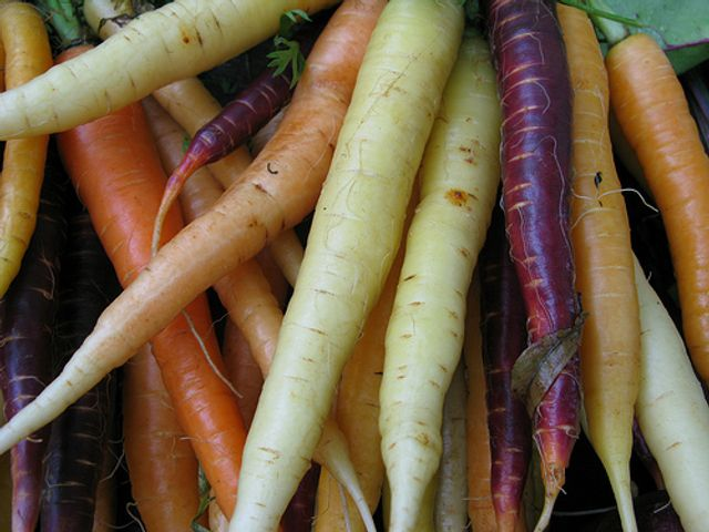 Carrots are orange, aren't they? featured image