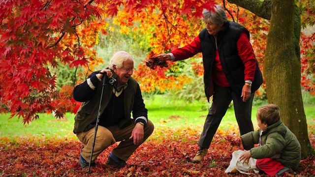 Shared Parental Leave for Grandparents featured image
