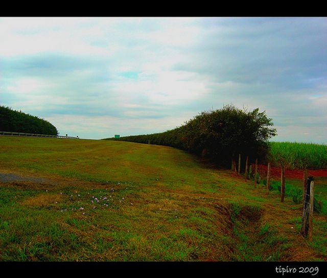 Unbuckling the green belt featured image