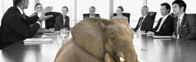 The elephant in the room featured image