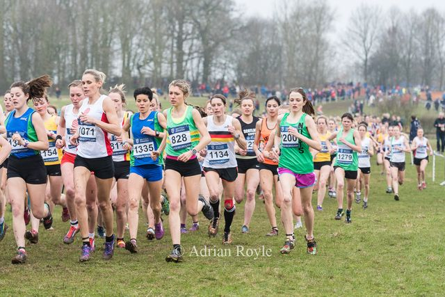 Time to hit the road - UK Inter Counties: The Final Cross. featured image