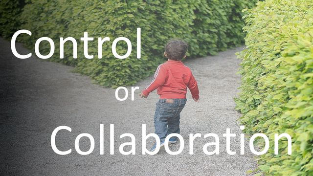 Which Path Of Evolution Should You Choose? – A Behavioural Coach's Perspective featured image