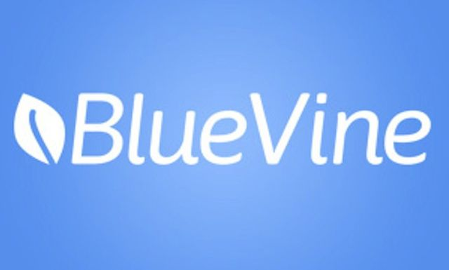 BlueVine takes in $130 mln featured image
