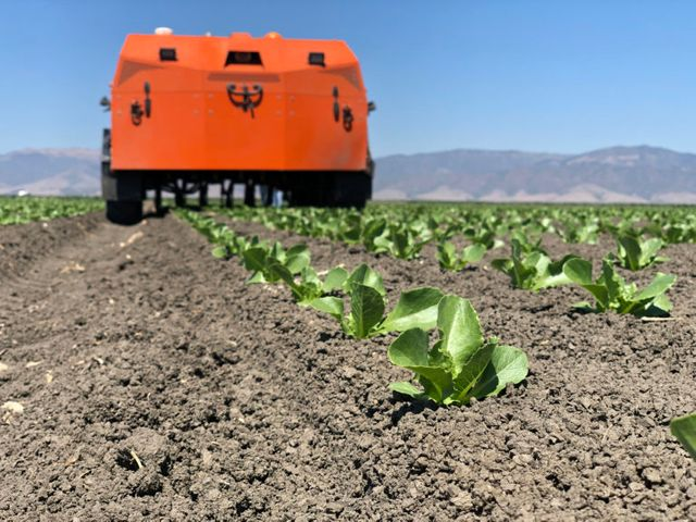 Growers Edge closes $40m to bring agtech innovation to more farms featured image