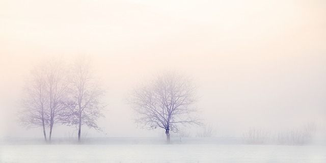 Are you dreaming of a white Christmas? featured image