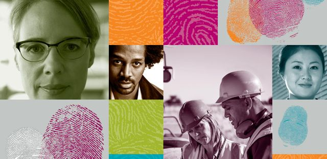 Delivering through diversity – McKinsey report featured image