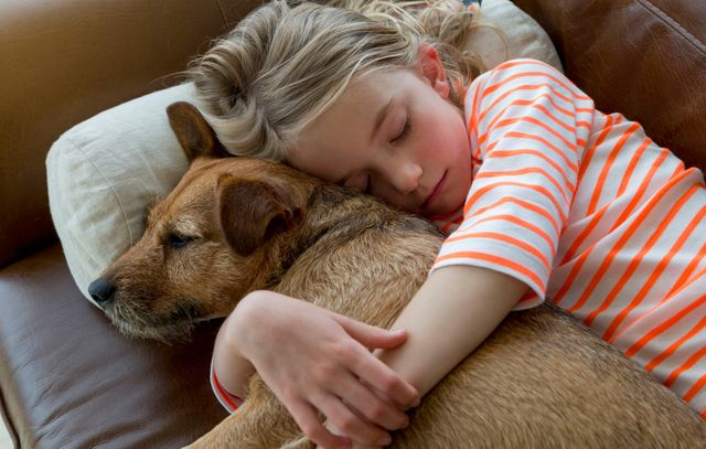 Who gets to keep the family pet? featured image