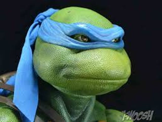 What is Leonardo? featured image