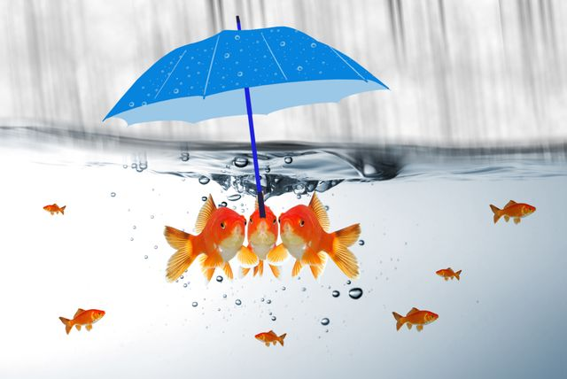 Digital transformation for insurance or simply competitive advantage featured image