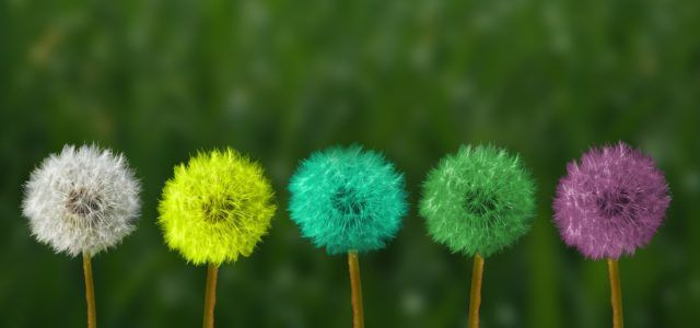4 Springtime Strategies to Liven up Your Company Culture featured image