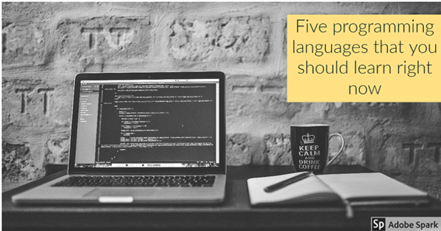 Five Programming Languages That You Should Learn Right Now featured image