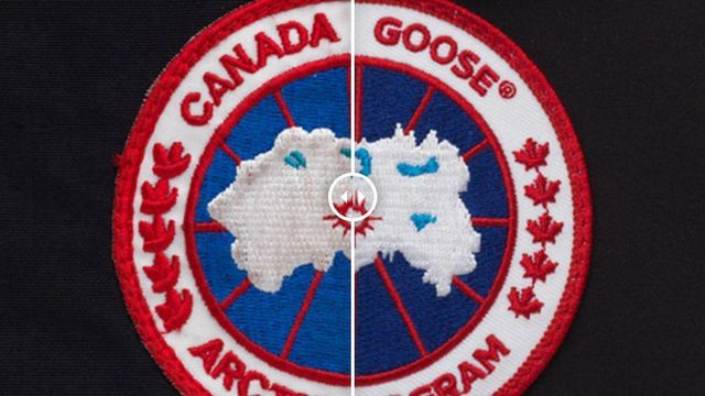 Canada Goose Files For Trademark Infringement featured image
