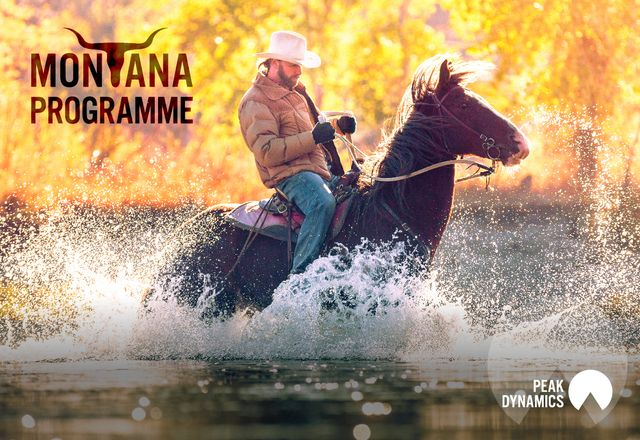 NEW! The Montana Programme featured image