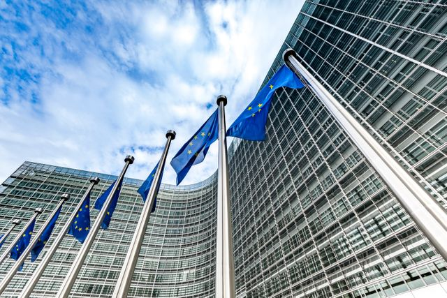 Focus on Forced Labour Risks: EU Commission publishes guidance for corporate due diligence featured image