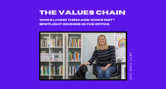 The values chain: Dogs in the office featured image