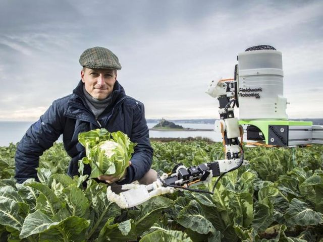 Robots augment human fruit pickers featured image