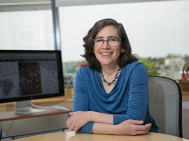 Celia Schiffer named chair of Department of Biochemistry & Molecular Biotechnology featured image