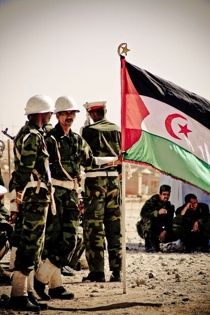 A High Stakes Gamble in Western Sahara featured image