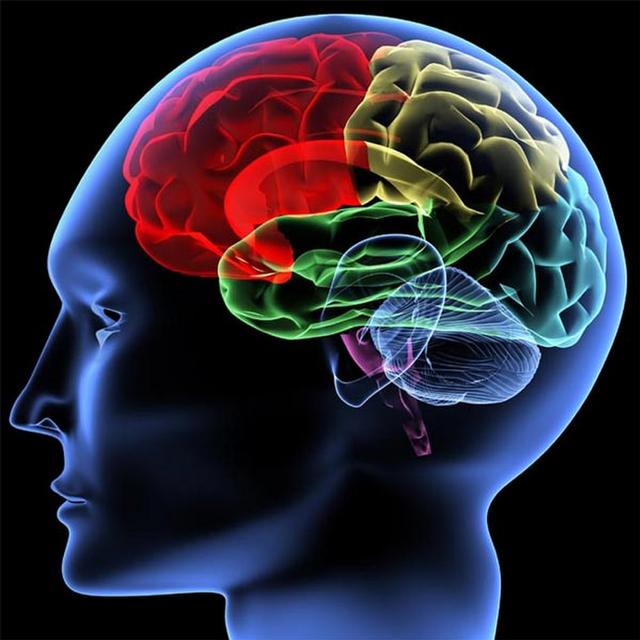 Heuristics sabotage the diverse mindset featured image