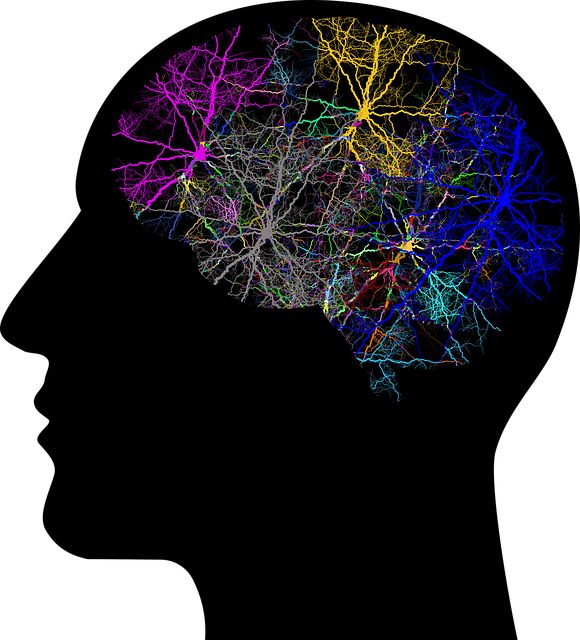 Neurodiversity... our uniqueness and greatness featured image