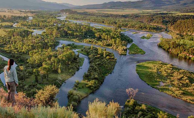 P3s To Support Govt Policy - Preserving Wetlands featured image