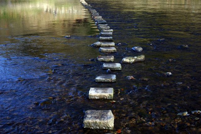 Digital Transformation, One Step at a Time featured image
