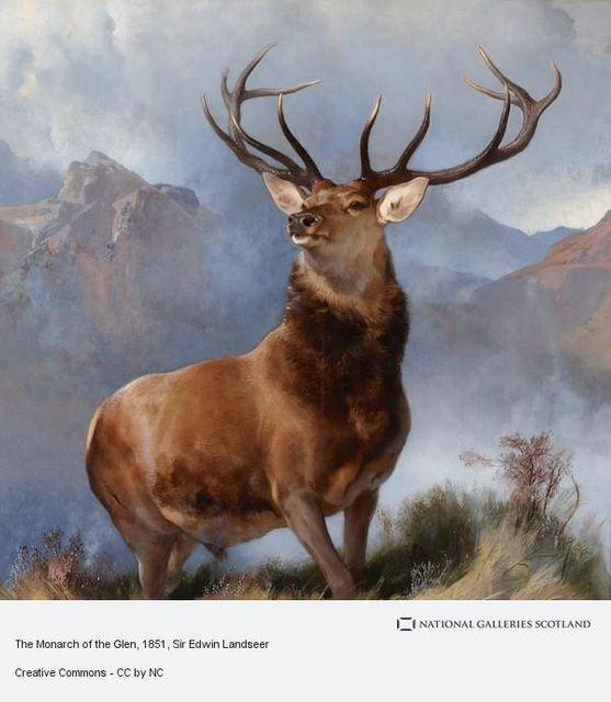 The Buck Stops In Bucks featured image