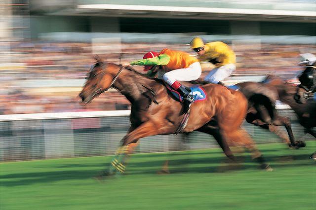 Ladbrokes gambling ad gives ASA the jitters featured image