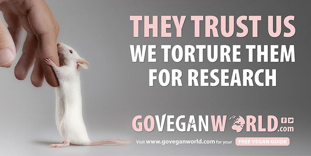 ASA approves animal torture claim by Go Vegan World featured image