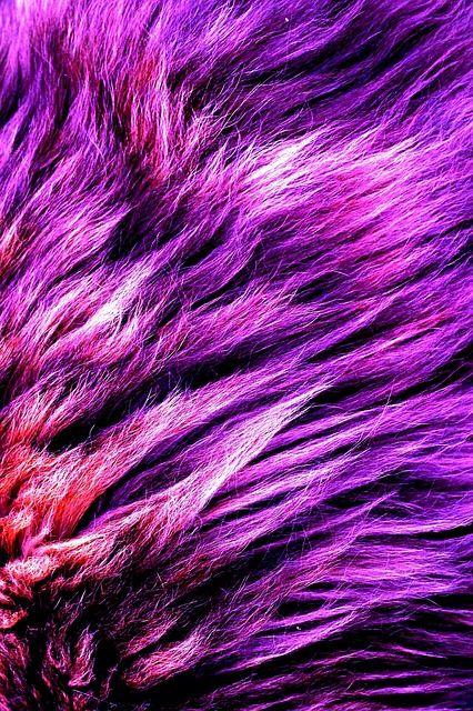 Faux fur? Mink again! featured image
