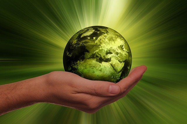 """40% of websites are """"greenwashing"""", according to global website sweep featured image"""