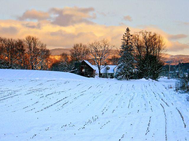 Vermont's onshore reinsurance alternative? featured image