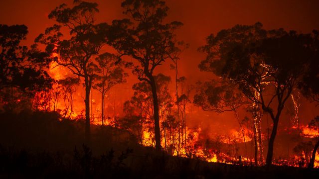 NSW environment regulator sued over failure to establish climate policy featured image