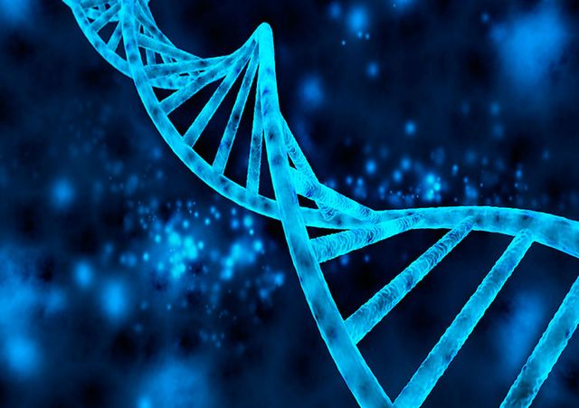 CRISPR: a tool for genome editing featured image