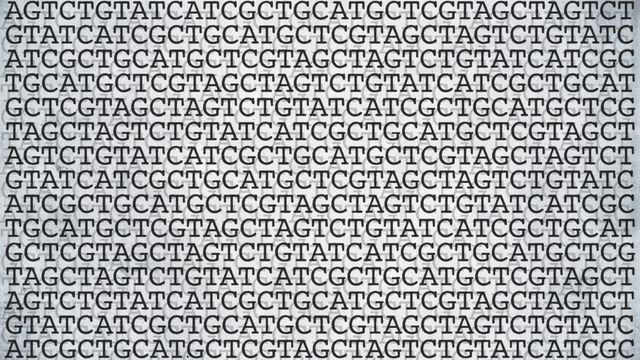 Gene editing gets more and finer tools featured image
