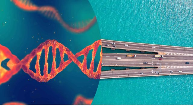"""""""Plans Are Worthless, But Planning Is Everything"""" - Biotech leaders discuss key challenges in self-commercialization for late-stage assets featured image"""