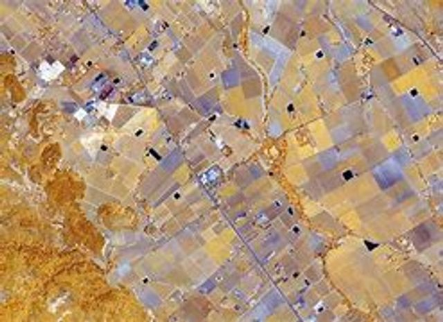 PlanetWatchers Gaining Momentum in Crop Insurance by Delivering Timely and Reliable Monitoring Services and Insights featured image