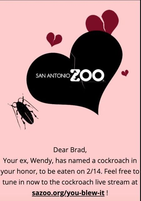 Valentine's Promotion for Vindictive Vermin-Haters featured image