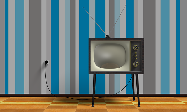 Must See (Privacy) TV featured image