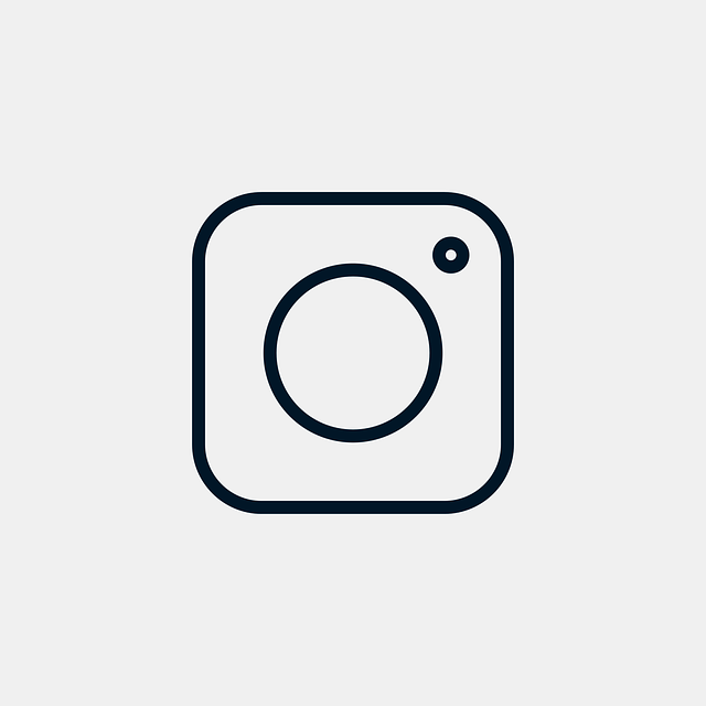 Embedding Photos from Instagram - Infringement or Licensed Use? featured image