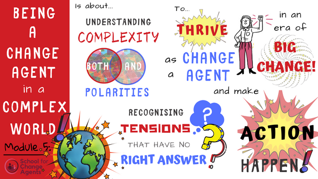 Being a Change Agent in a Complex World - Reflections on Module 5 of The School for Change Agents featured image