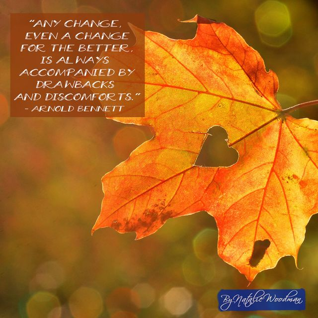 How Do You Navigate Change During Your Rehabilitation? featured image