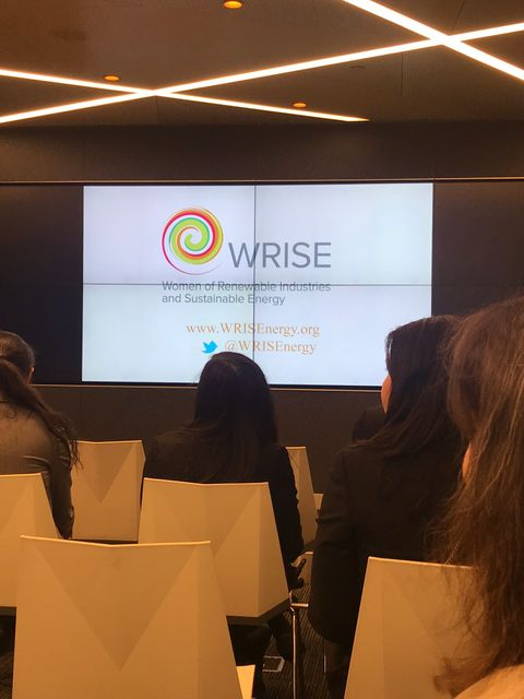 WRISE up! Celebrating Women's Leadership in Renewables, Energy Efficiency and Energy Storage. featured image